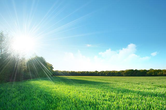 Sol iluminando campo