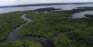 A Bacia Amazônica