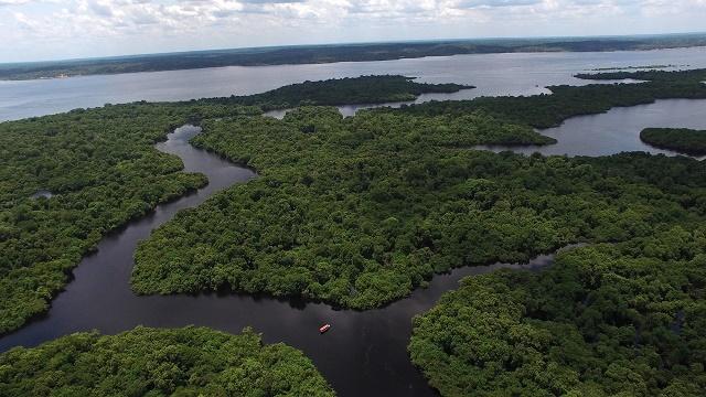 Bacia Amazônica do alto