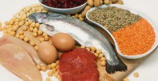 O que são e qual a importância das proteínas?