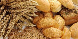 O que são e qual a importância dos carboidratos?
