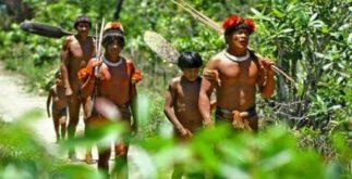 Os índios – Primeiros habitantes do Brasil