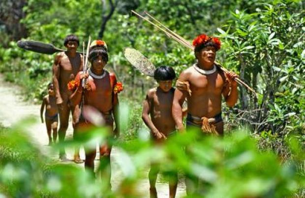 Asurini People, The* Asurini·& Arara People, The* Arara - Brésil: Amérindiens D'Amazonie / Brazil: American Indians Of The Amazon