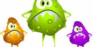 O que é o vírus?
