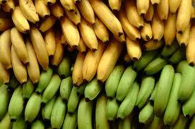 Como as frutas amadurecem?