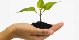 Recursos da natureza e seus usos