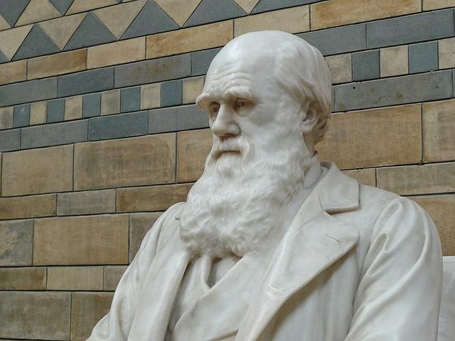 Charles Darwin foi o responsável pelo estudo sobre a seleção natural