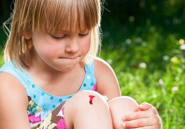 Sangue: tecido vivo que circula no interior do nosso corpo