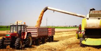Agronegócio e a abrangência dos três setores da economia