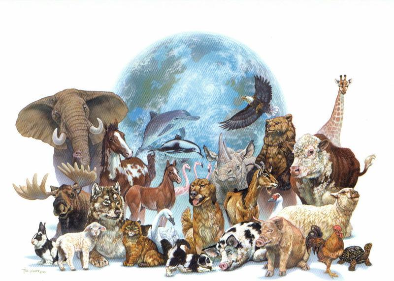 O reino animal e seus recordes