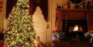 A origem de um dos símbolos natalinos, a Árvore de Natal