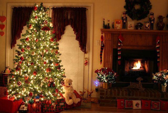 A origem de um dos maiores símbolos natalinos, a Árvore de Natal