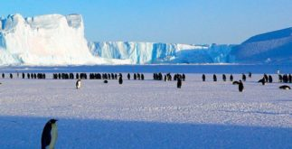 Qual é o país mais frio do mundo? Descubra agora