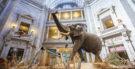 18 de maio: Dia dos Museus