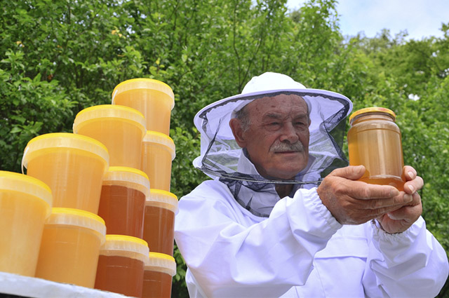O apicultor é responsável por criar e cuidar das abelhas