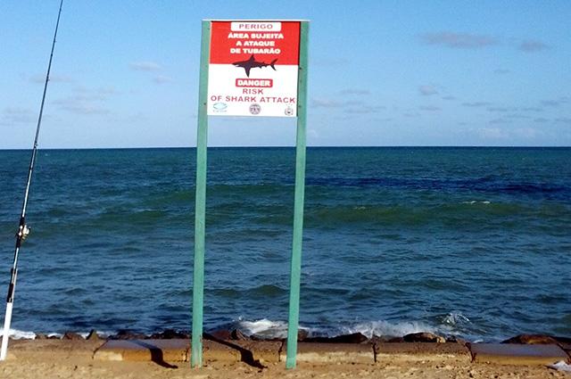 É importante respeitar as placas de aviso de perigo de ataque de tubarão