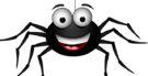 Aranha é inseto? Descubra tudo sobre esse animal!