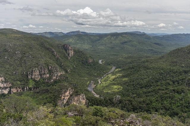Imagem área do Cerrado