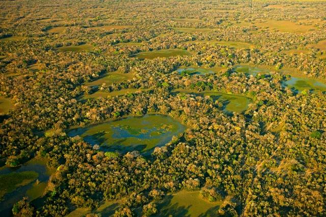 Imagem aérea do Pantanal