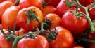 Tomate é fruta, legume ou verdura?